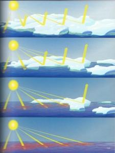 Loss of Sea Ice Heats Ocean